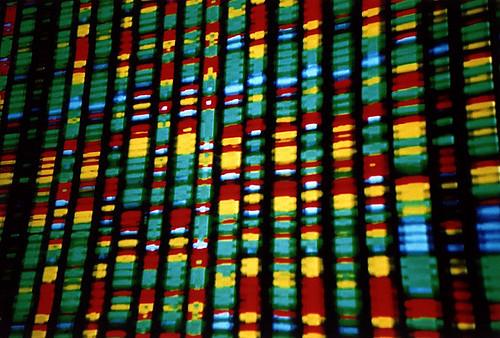 Google DNA Venture