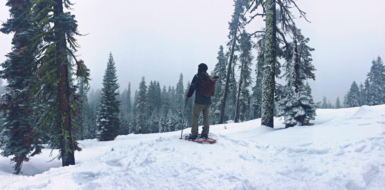 Snow-shoeing Radar Creative